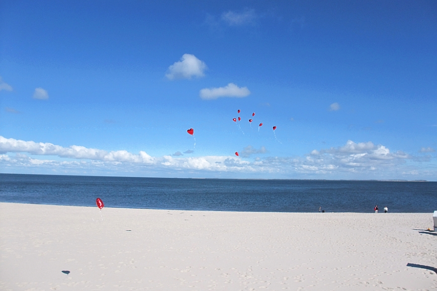Insel Sylt - Link